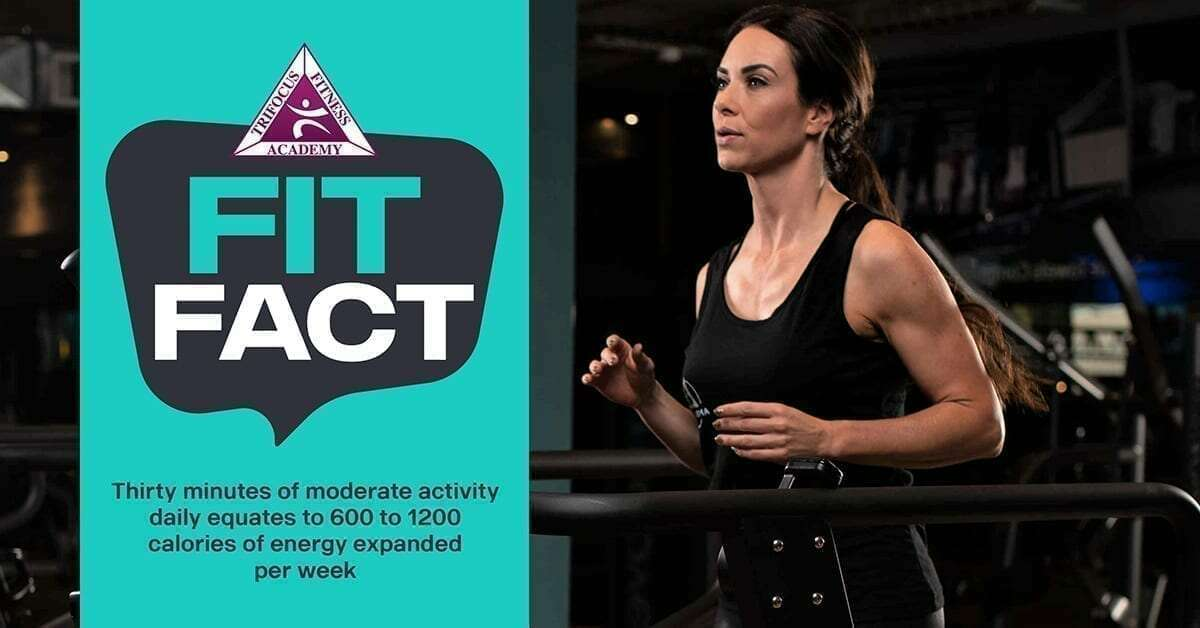 Trifocus Fitness Academy - workout routine